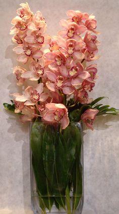 Cymbidium | Inicio / Regalos de empresa / Flores / Florero con orquideas cymbidium