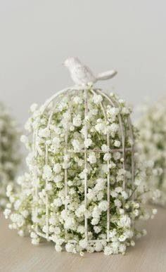 Baby's breath in a bird cage! For center peices on tables.