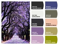 purples lilacs violets charcoals blue green taupe accents wedding little girls room nursery office Paint colors from Chip It! by Sherwin-Williams #chipit #sherwinwilliams