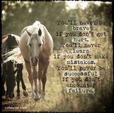 You'll never learn if you don't make mistakes Rodeo Quotes, Equine Quotes, Equestrian Quotes, Hunting Quotes, Bond Quotes, Life Quotes, Family Quotes, Quotes Quotes, Qoutes