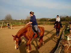 We offer double school hour lessons per day on our schooling horses, you can choose. Horse Riding Croatia. www.stable-mates.com