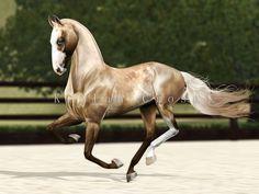 KC Gayratly, Sayadianero stallion