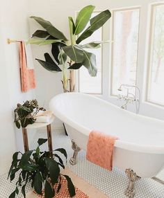 Bathroom Decor Modern Meets Boho In Paige Rangel's Phoenix, AZ Home Modern Meets Boho In Paige Rangel& Phoenix, AZ Home Decor Interior Design, Interior Styling, Interior Decorating, Palm Springs Interior Design, Interior Plants, Home Staging, Bathroom Inspiration, Interior Inspiration, Creative Inspiration