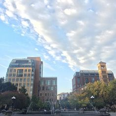 http://washingtonsquareparkerz.com/good-morning-nyc-bom-dia-fall-nyc-washingtonsquarepark/ | Good morning, NYC!! Bom dia!! #fall #NYC #washingtonsquarepark