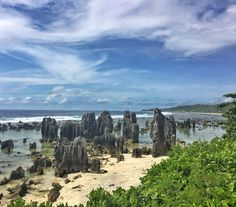 Some of the gorgeous scenery in Nauru