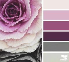 Design Seeds celebrate colors found in nature and the aesthetic of purposeful living. Colour Pallette, Color Palate, Colour Schemes, Color Combos, Design Seeds, Palette Design, Decoration Palette, Color Harmony, Colour Board