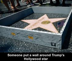 Someone put a wall around Trump's Hollywood star funny pics, funny gifs, funny videos, funny memes, funny jokes. LOL Pics app is for iOS, Android, iPhone, iPod, iPad, Tablet