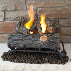 Celebrate the rich comfort and warmth of a fireplace hearth in any room of your home with this Real Flame Oak Convert to Gel Fireplace Logs. Gel Fireplace, Fireplace Hearth, Fireplace Inserts, Fireplace Ideas, Unused Fireplace, Fireplace Decorations, Fireplace Design, Electric Logs, Oak Logs