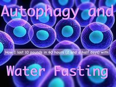 How I Lost 10 Pounds in 60 Hours With Autophagy and Water Fasting Losing 10 Pounds, Losing Me, What Is Autophagy, Blood Sugar Solution, Immune System Diseases, Water Fasting, Eco Green