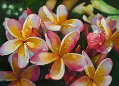 by Kathleen Alexander - watercolor - from Art Maui 2011 - plumerias