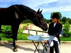 www.horsealot.com, the equestrian social network for riders & horse lovers | Equestrian Fashion : Silver Crown.