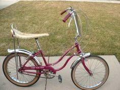 Bikes Craigslist Delaware Schwinn Stingray Bike