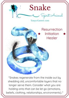 Snake spirit animal symbolism, meaning, and watercolor painting by Tanya Casteel Snake Spirit Animal, Animal Spirit Guides, Your Spirit Animal, Snake Symbolism, Animal Symbolism, Animal Meanings, Symbols And Meanings, Animal Espiritual, Spiritual Animal