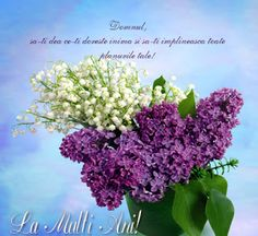 Versete de Aur : La Multi Ani! Birthday Greetings, Happy Birthday, Thing 1, Birthdays, Aur, Plants, Cards, 8 Martie, Motto