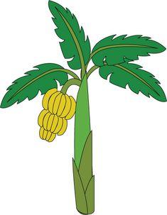 Treklens Think Banana Tree Photo - ClipArt Best - ClipArt Best