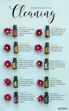love doTERRA Essential Oils as a natural way to clean. Try these great ways to clean with oils.We love doTERRA Essential Oils as a natural way to clean. Try these great ways to clean with oils. Diy Cosmetic, Elixir Floral, Anti Aging Creme, Limpieza Natural, Essential Oils Cleaning, Cooking With Essential Oils, Essential Oil Diffuser Blends, Essential Oil Spray, Lavender Essential Oil Uses