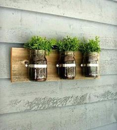 Mason jar wall planter— for an indoor herb garden :) Mason Jars, Mason Jar Planter, Mason Jar Crafts, Glass Jars, Decoration Palette, Hanging Planters, Wall Planters, Herb Planters, Wall Organization