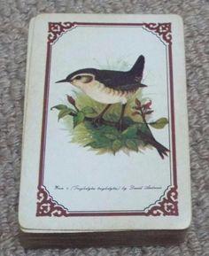 Wren - Birds - Vintage 1950 s Pack of Kent Playing Cards - David Andrews