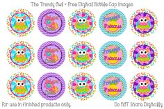 Rainbow Owls Bottle Cap Images