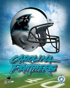 carolina panthers 2013 Champions of NFC South | ... NFC South, but also the conference's No. 2 seed and a first-round