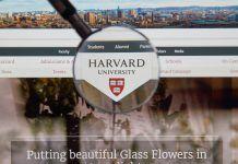 Universidad de Harvard ofrece 150 cursos online gratis en 2020 Glass Flowers, Online Gratis, Free, Data Science, Machine Learning, Harvard University, Jobs At Home, Earn Money From Home