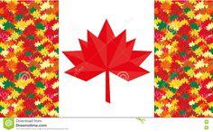 """""""加拿大枫叶""""的图片搜索结果"""