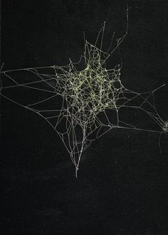 Sandra Selig, Spider Web, 2010 / spider silk, enamel and fixative on paper