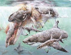 Sharks+Devouring+a+Sperm+Whale+by+SharkeyTrike.deviantart.com+on+@DeviantArt