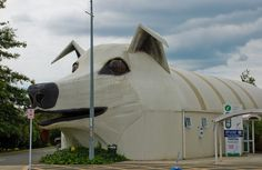 There is a dog-shaped building in New Zealand.