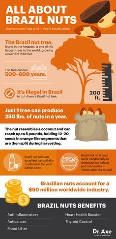 All about Brazil nuts - Dr. Axe