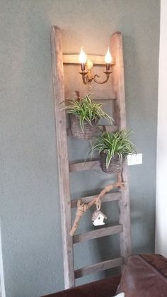 Wooden ladder with plants Old Ladder Decor, Rustic Decor, Farmhouse Decor, Wall Decor, Room Decor, Massage Room, Porch Decorating, House Styles, Inspiration