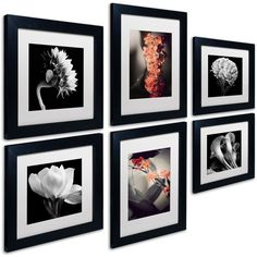 Floral 6 Piece Framed Photographic Print Set (230 BRL) ❤ liked on Polyvore featuring home, home decor, wall art, floral home decor, framed floral wall art, photography wall art, photographic wall art and framed photography wall art