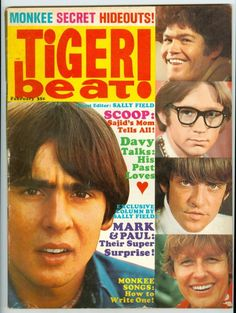 I had a subscription to this! Loved the posters!