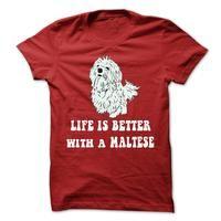 Maltese - I Dont Always Spoil My Maltese ,Oh Wait , Yes I Do !