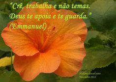 """""""Crê, trabalha e não temas. Deus te apoia e te guarda."""" (Emmanuel / Chico Xavier)"""