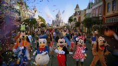 Vive tu canción en Walt Disney World