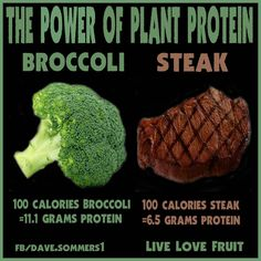 an equal caloric amount (100 calories) of porterhouse steak is compared to broccoli, romaine lettuce and kale. Broccoli provides the greatest amount of protein per calorie.