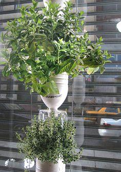horta na janela com garrafa pet