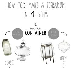 How to make a Terrarium in 4 steps...
