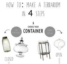 How to make a Terrarium in 4 steps...
