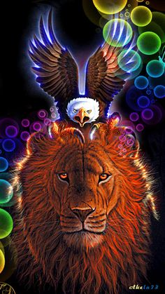 Lew i Kondor - Lion And Condor Gif's Colorful Animal Paintings, Colorful Animals, Images Gif, Gif Pictures, Beautiful Gif, Beautiful Horses, Beautiful Pictures, Lion Live Wallpaper, Animation