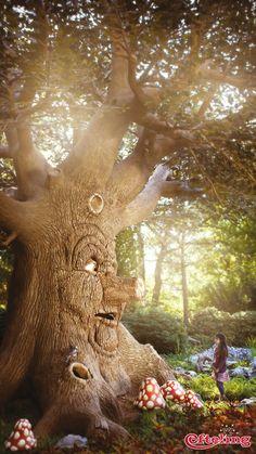 Efteling wallpaper van Sprookjesboom. Hij staat al jaren diep geworteld in het Sprookjesbos en weet precies wat de Sprookjesbosbewoners uitspoken…