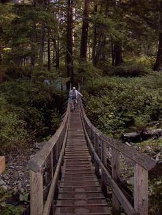 Cannon Beach, Oregon Forest Trail