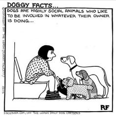 LOL! ~ Don't I know it, my baby likes to lick body lotion off my legs after I shower.