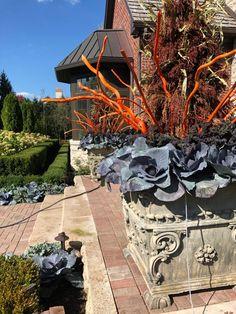 Deborah Silver and Co Inc – Page 3 Outdoor Christmas Planters, Christmas Urns, Outdoor Pots, Outdoor Spaces, Outdoor Living, Christmas Decorations, Outdoor Decor, Green Landscape, Landscape Design
