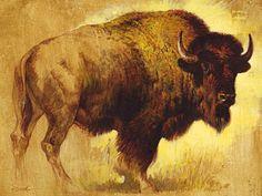 Buffalo Painting, Buffalo Art, Buffalo Tattoo, Native American Pictures, American Bison, Cow Art, Wildlife Art, Dog Portraits, Western Art