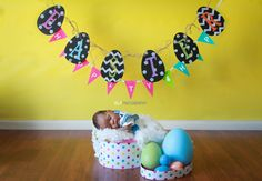 Easter Minis  - newborn - easter minis - easter indoor mini session - easter photography - studio backdrops - Photography Props, Children Photography, Easter 2018, Studio Backdrops, The Hamptons, Minis, First Birthdays, Indoor, Photos