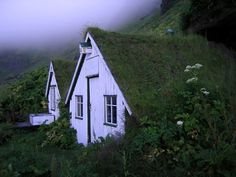Sod roof houses in Vik, Iceland. Photo by Gilles Baldet. The birdhouses are my favorite detail.