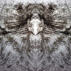 #mirrorgram #brushes #iphone Karen Hyams 2014