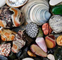 beach finds. Kieran Foley.